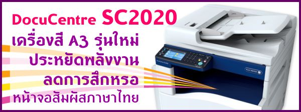 PAGE-sc2020